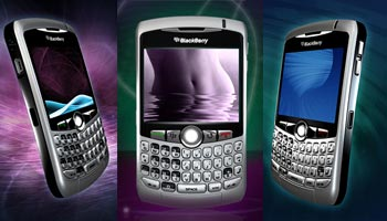 BlackBerry Curve 8300 8310 8320